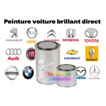 Peinture voiture brillant direct  2,5 KG