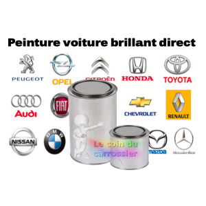 Peinture voiture brillant direct  1kg