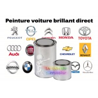 Peinture Voiture Brillant Direct Le Coin Du Carrossier